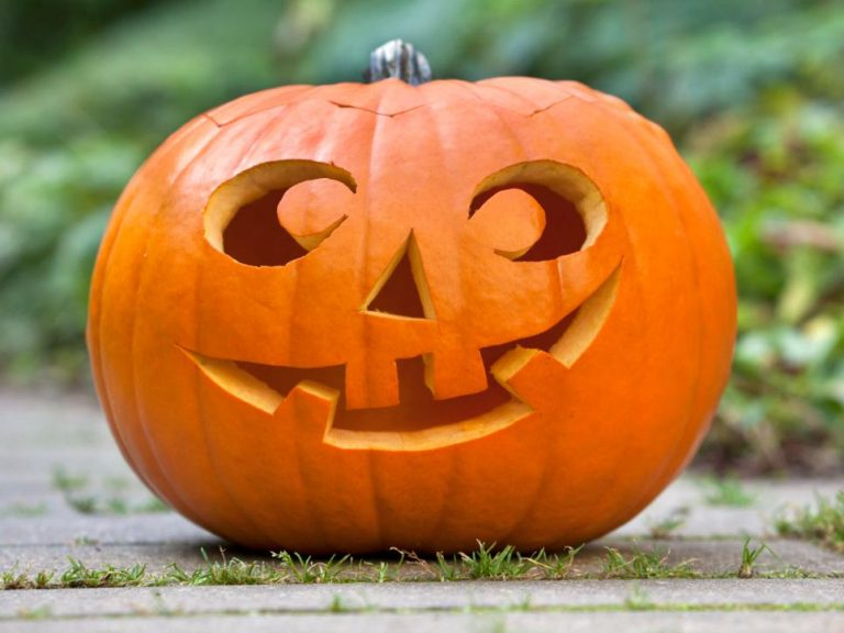 Pumpkin Carving Ideas 2017