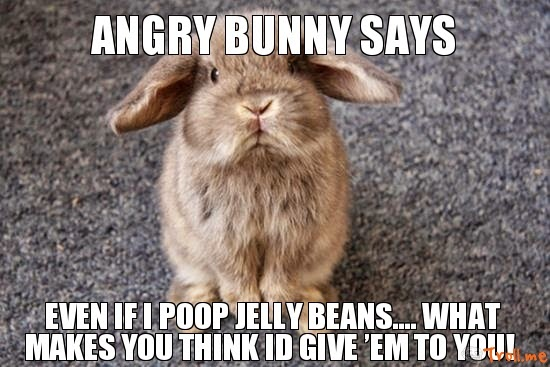 Angry Easter Bunny Memes