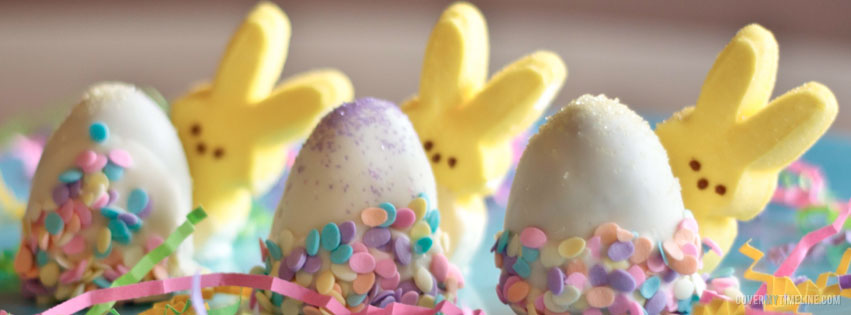 Easter Facebook Timeline Photos Free