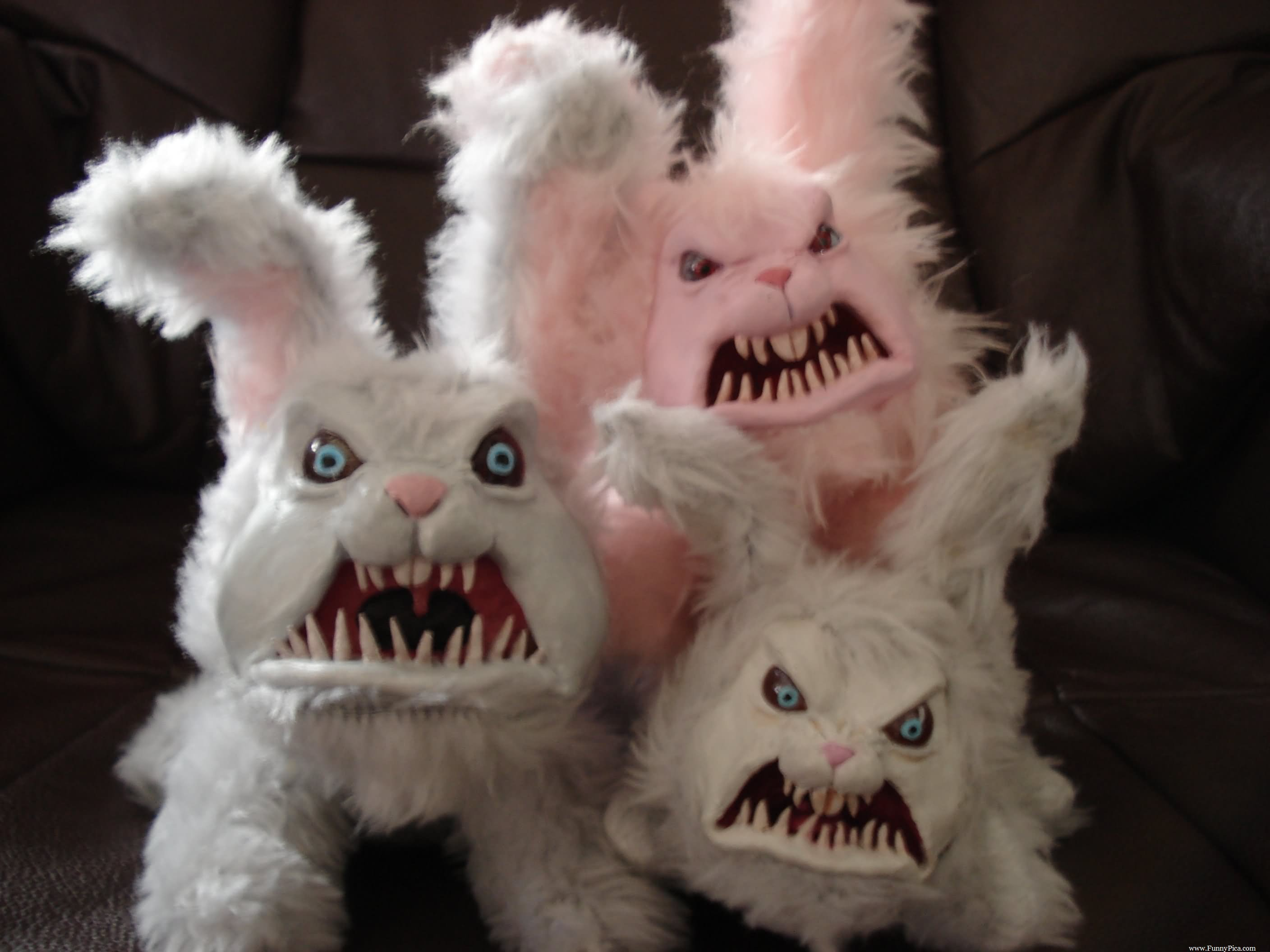Funny Easter Image