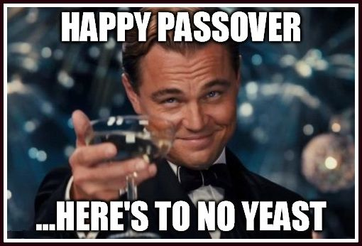 Funny Passover Memes