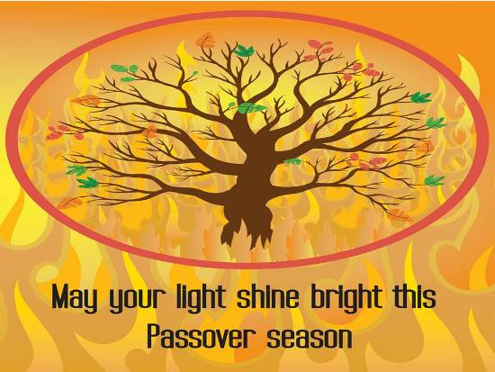 Happy Passover Greetings Messages