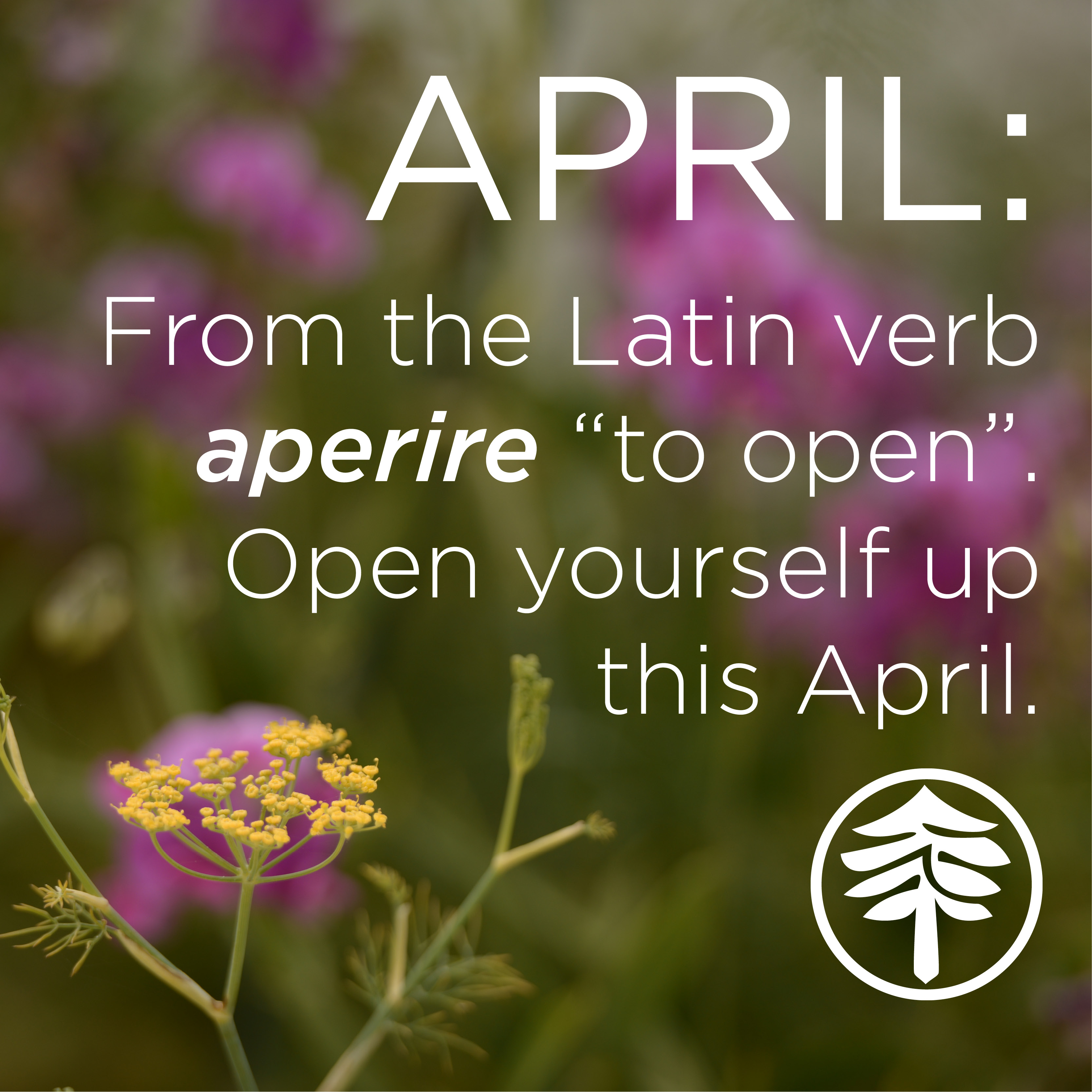 April Calendar Quotes : Welcome april quotes and sayings for calendars
