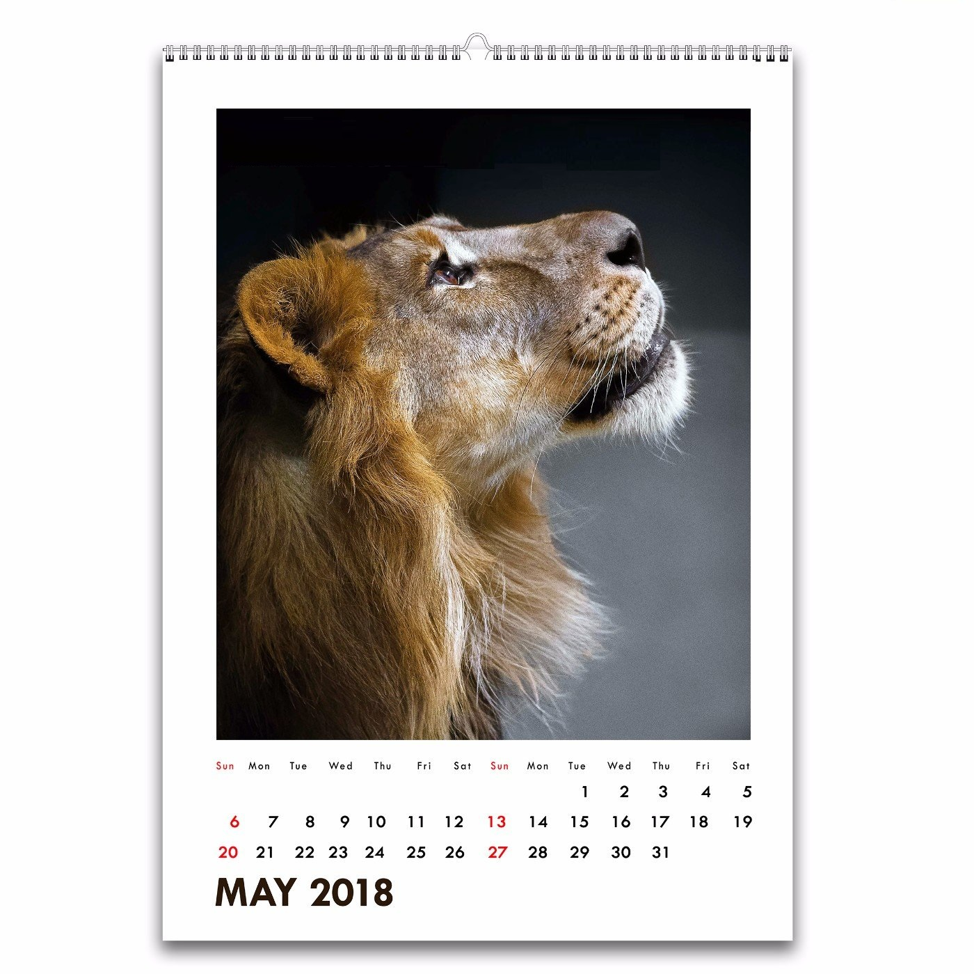 Amazing May 2018 Wall Calendar