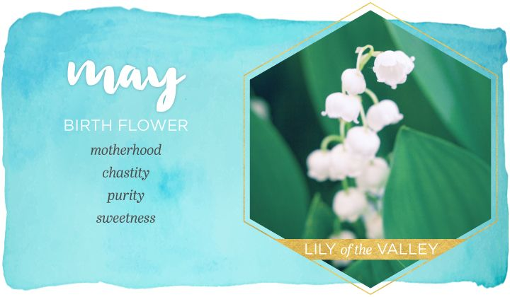 Birth Flower for May
