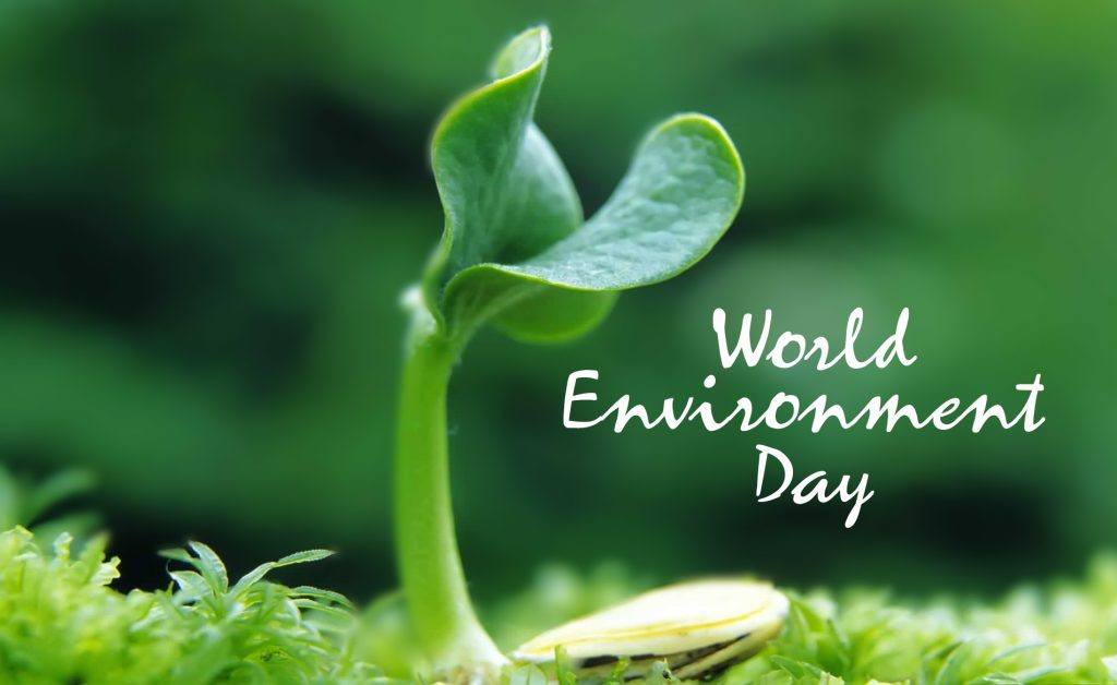 Earth Day Messages World Environment