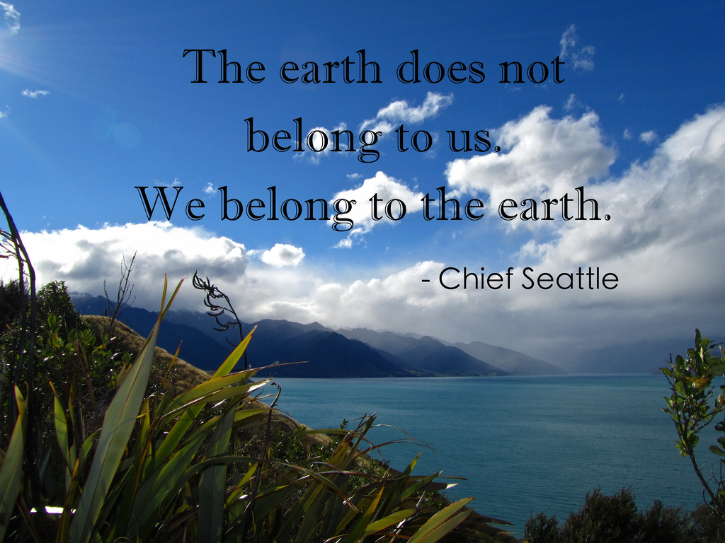 Earth Day Slogans Best Posters