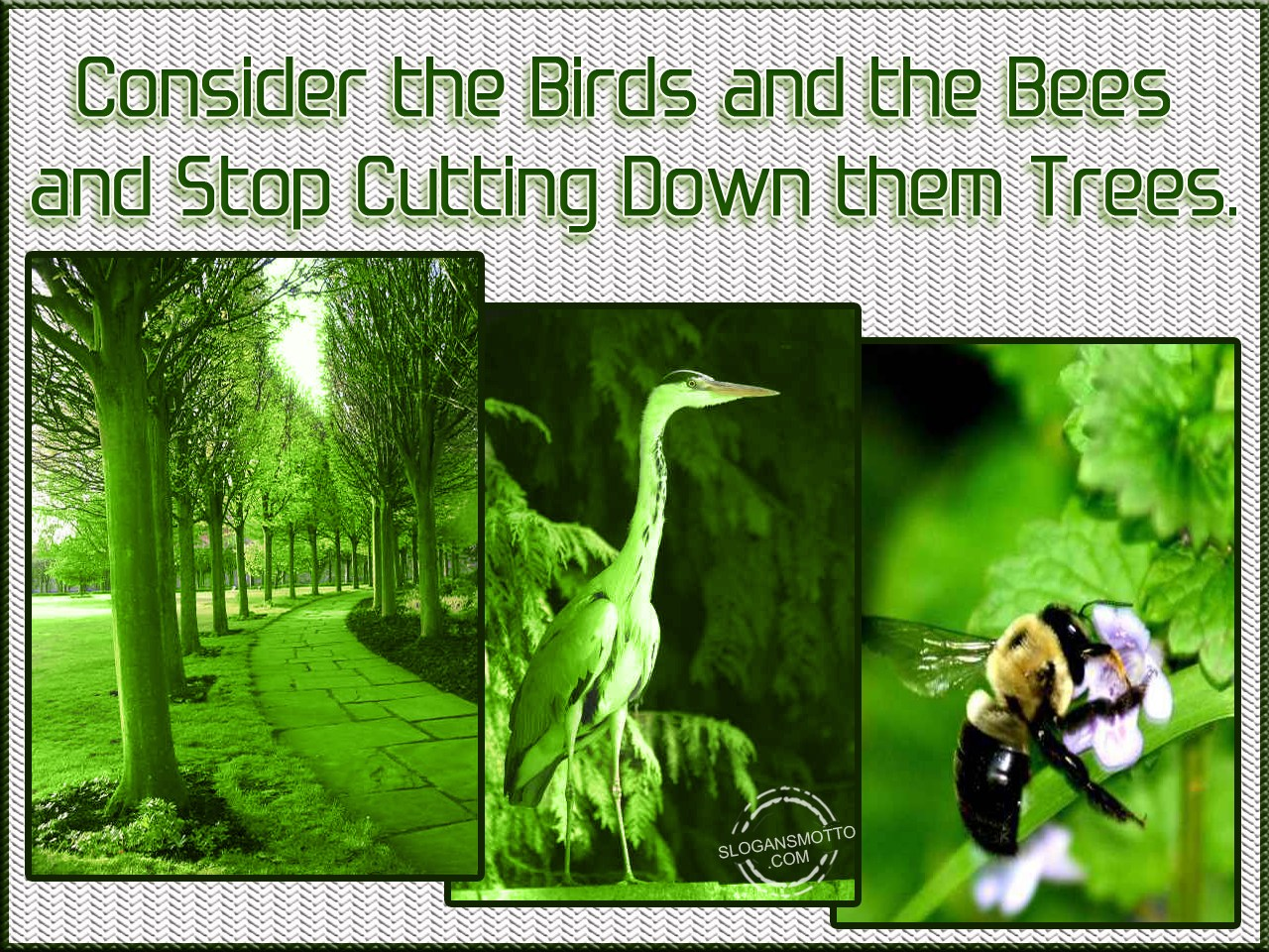 Earth Day Slogans Posters Images