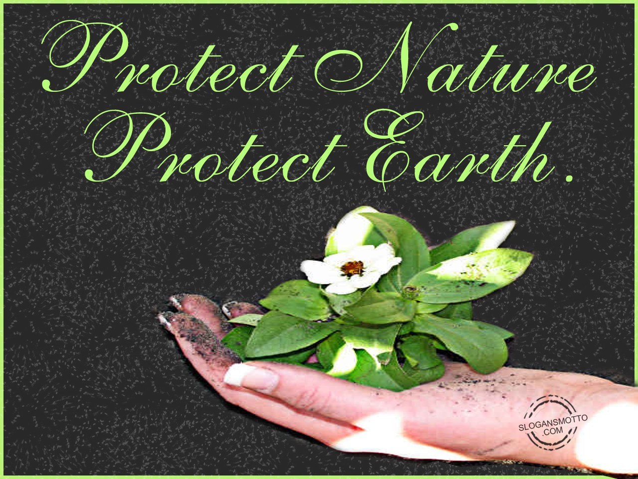 Earth Day Slogans Posters Protect Nature