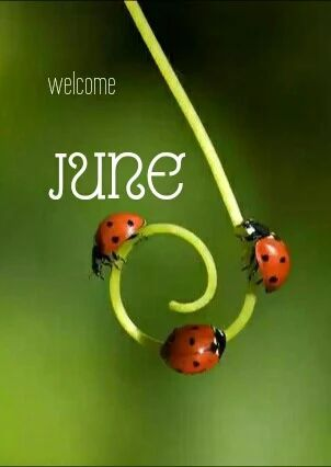 Free Goodbye May Hello June Images Free Download