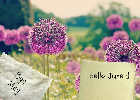 Free Goodbye May Hello June Images Wishes
