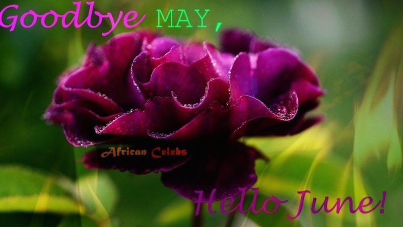 Goodbye May Hello June, New Month