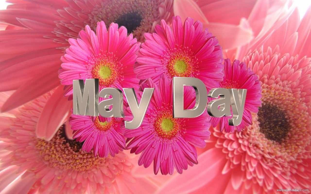Happy May Day Images Flowers