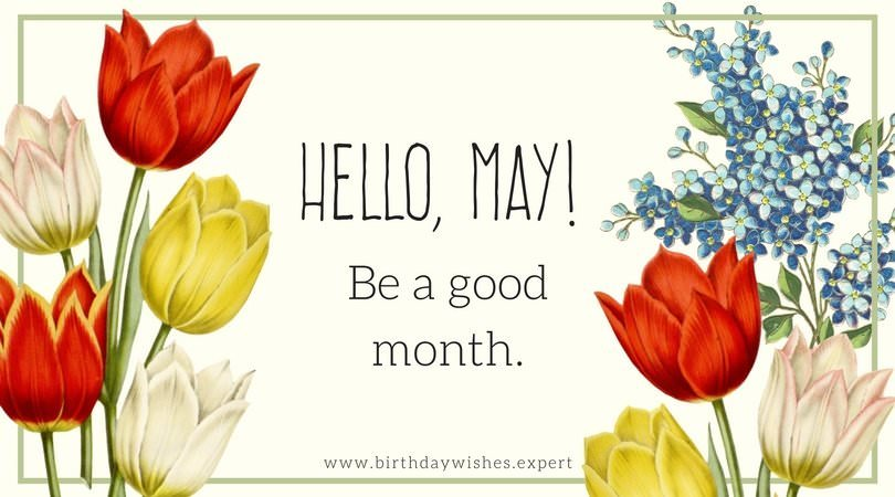 Hello May Flowers