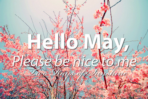 Hello May, Please Be Nice To Me