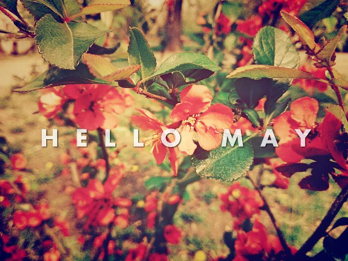 Hello May Quotes For Greeting Cards