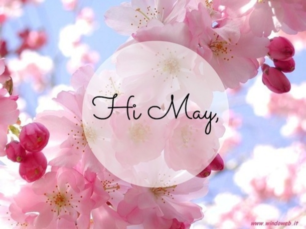 Hello May Quotes Tumblr