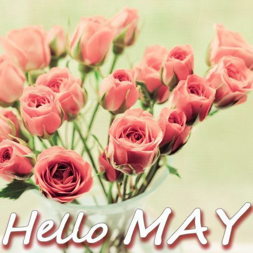 Hello May Quotes With Flower