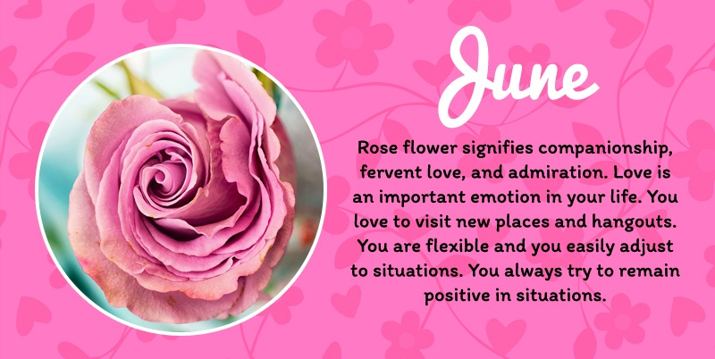 June Birth Flower Meaning