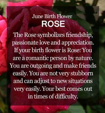 June Birth Flower Quotes