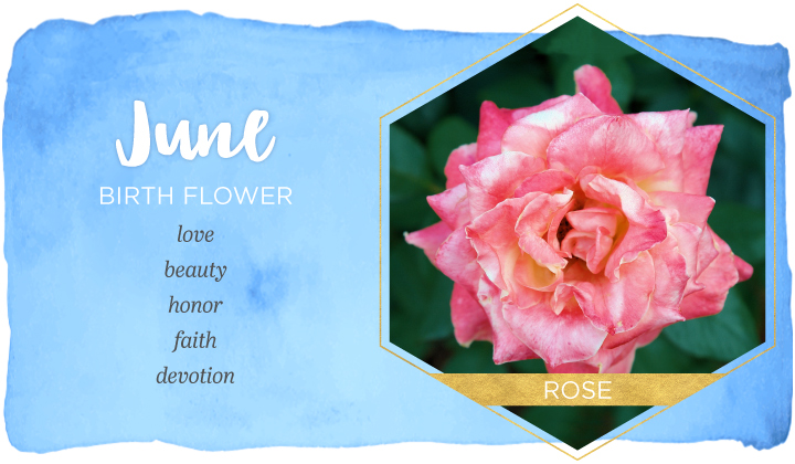 June Birth Flower Wishes