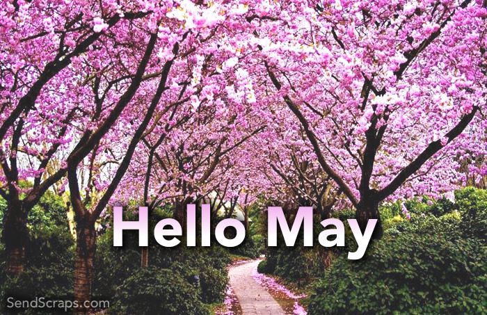 Quotes Hello May