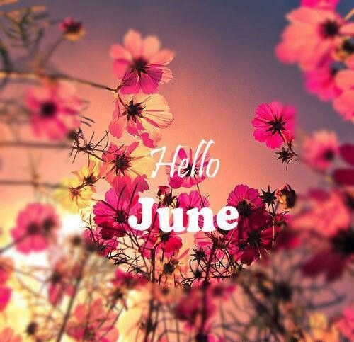 Welcome June Images Adorable Banner