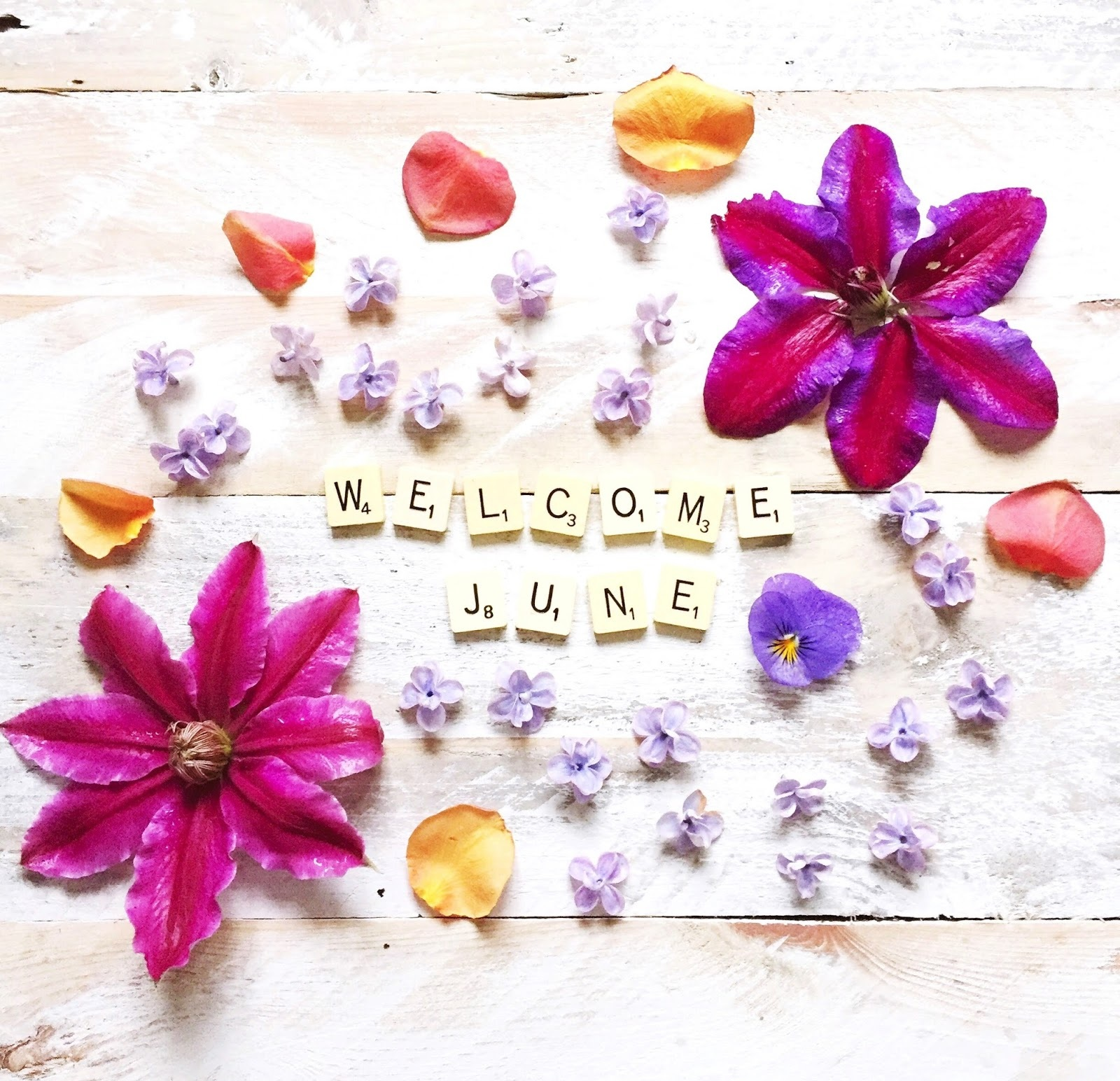 Welcome June Images Greeting Craft