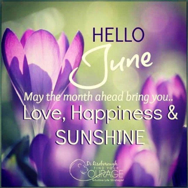 Welcome June Quotes Message Floral