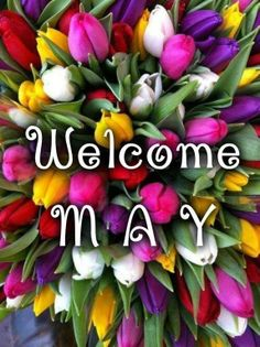 Welcome May 2018