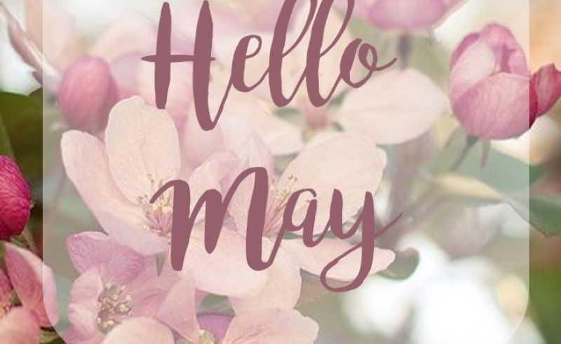 Welcome May Flowers