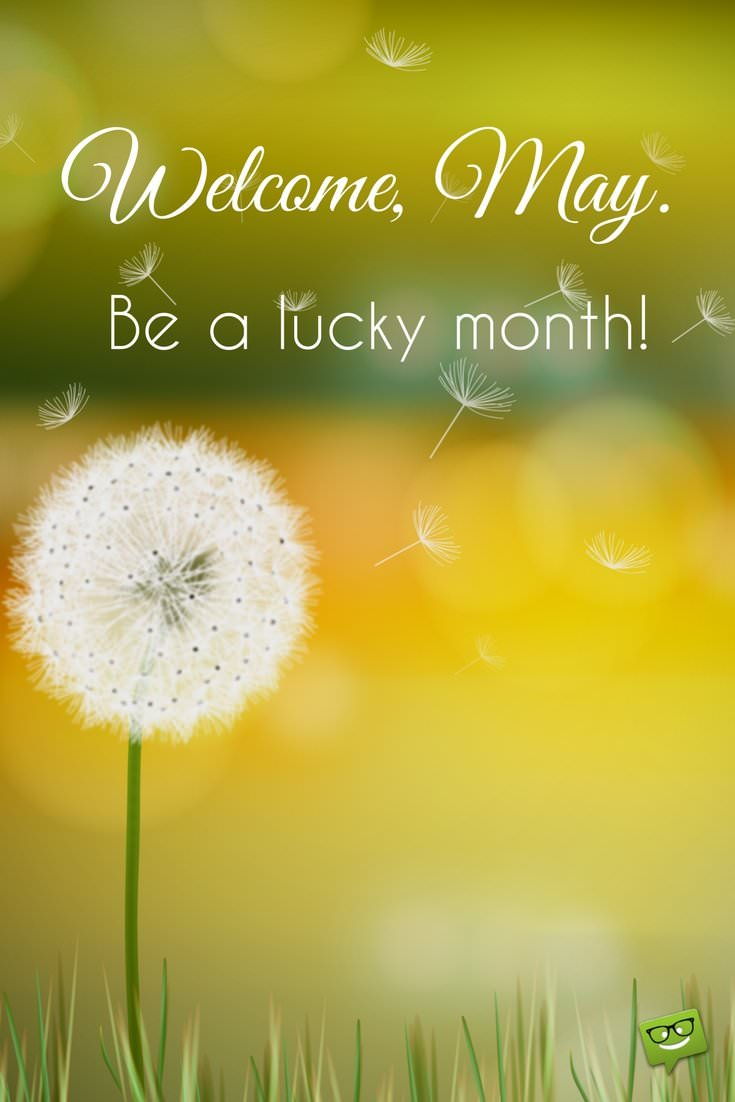 Welcome May Quotes Be a Luky Month
