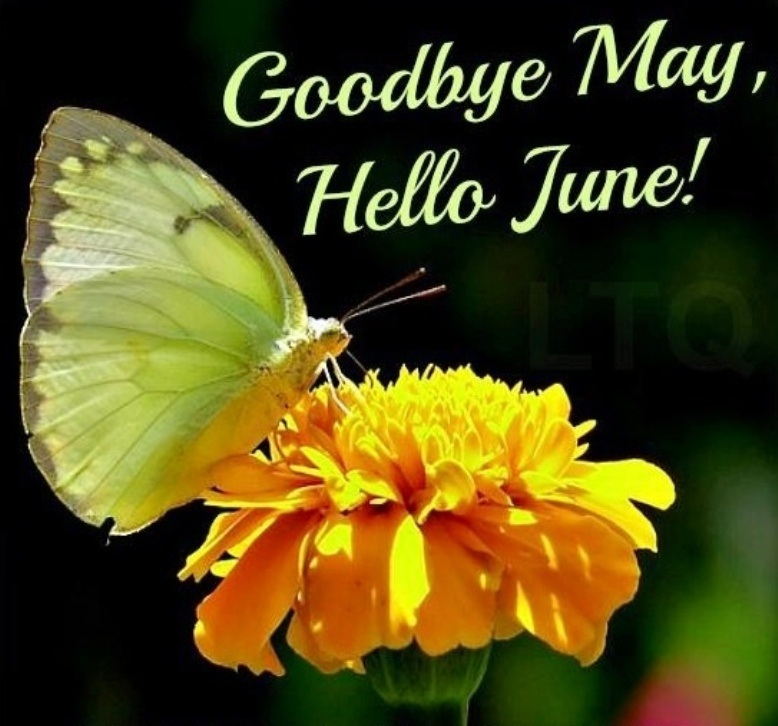Bye May Hello June