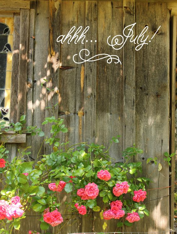Welcome July Images Cute
