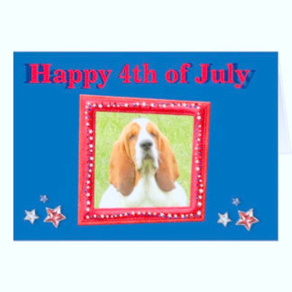 Funny 4th of July Cards