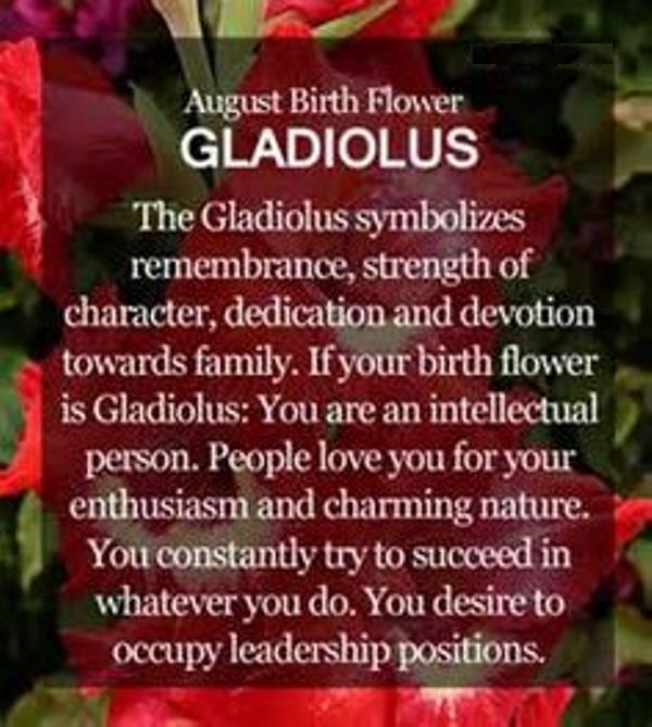 August Birth Flower Meaning
