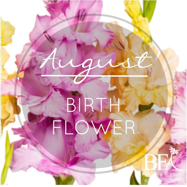 August Birth Flower Pictures