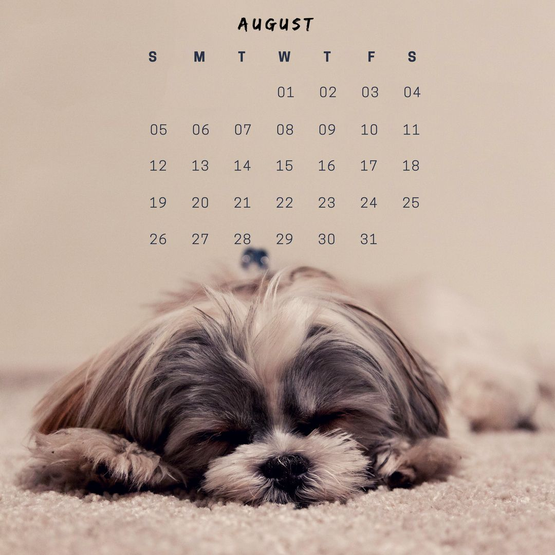 Cute August 2018 iPhone HD Calendar