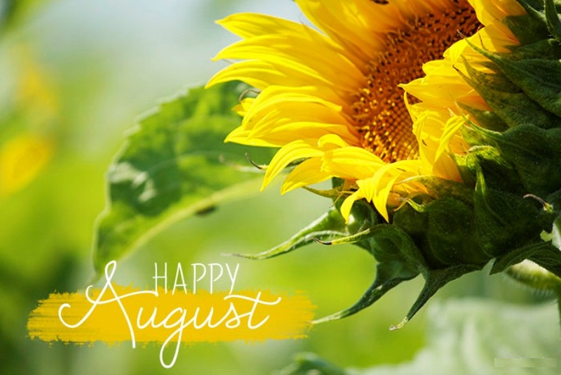 Happy August Month