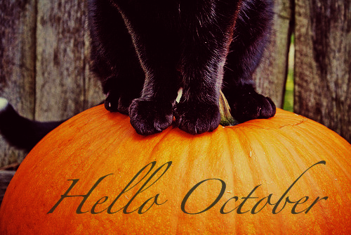 Hello October Images Funny