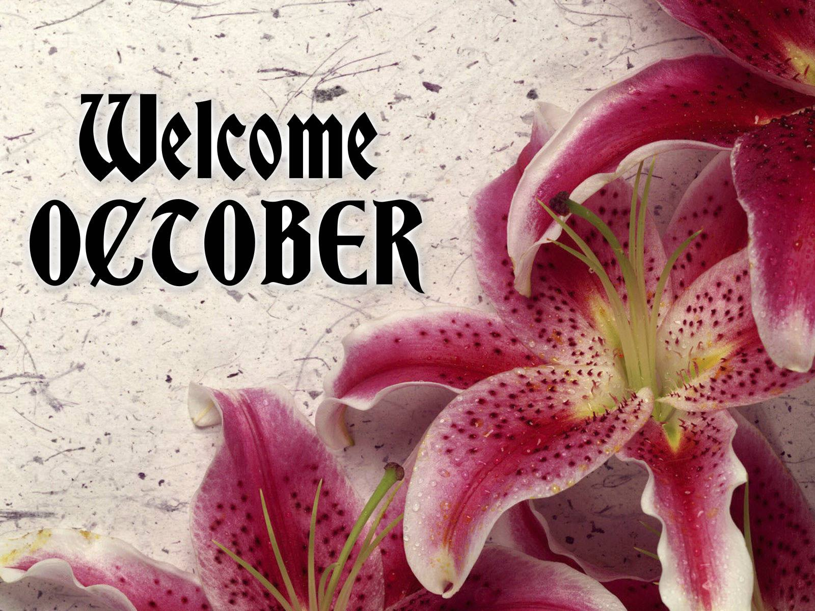 Welcome October Month Wallpapers