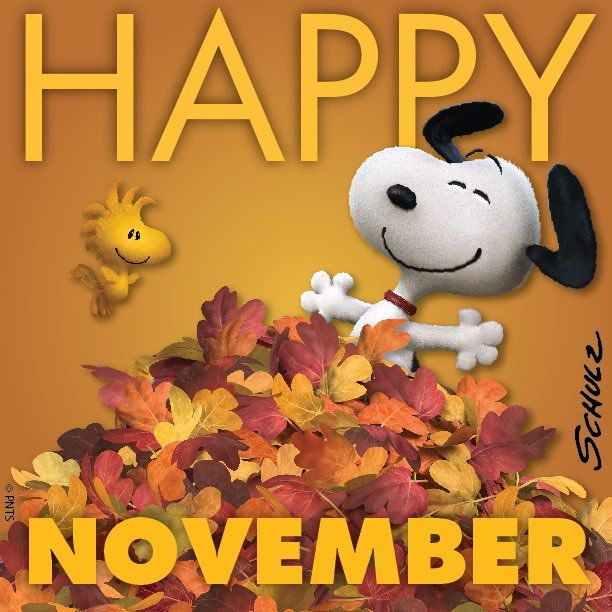 Happy November Pictures