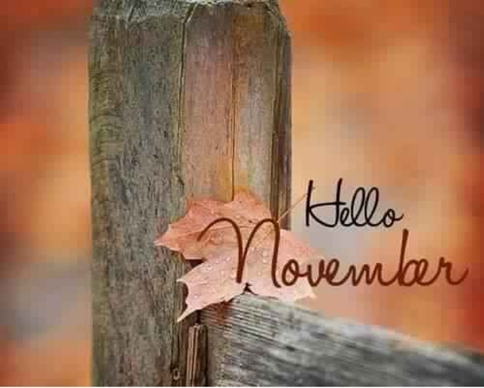 Hello November Facebook Images