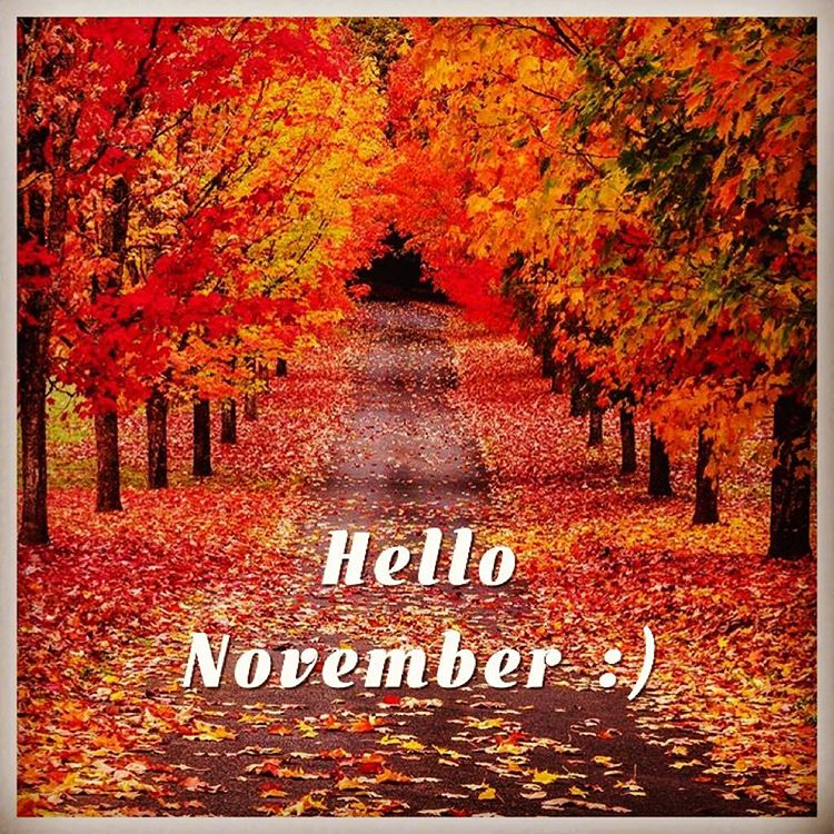 Hello November Images, Pictures
