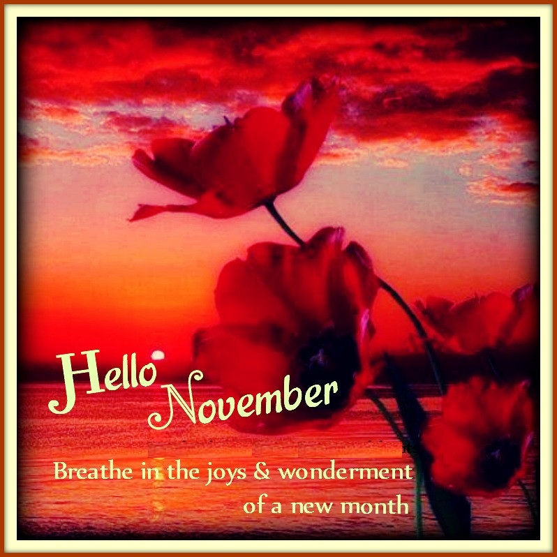 Hello November Quotes Images