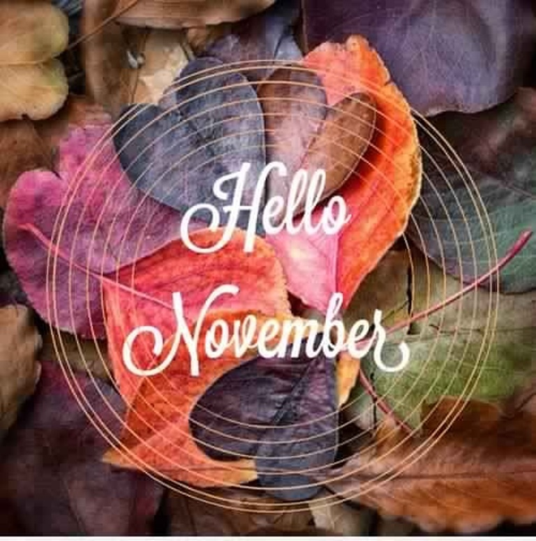 Hello November Twitter Images