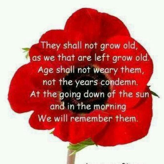 Remembrance Day 3D Images Clipart