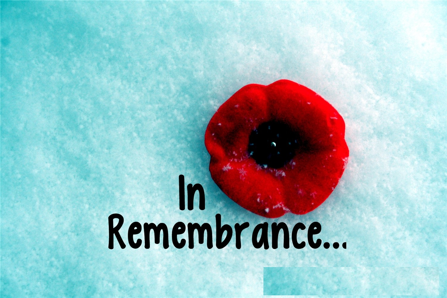 Remembrance Day Canada Lest We Forget Message
