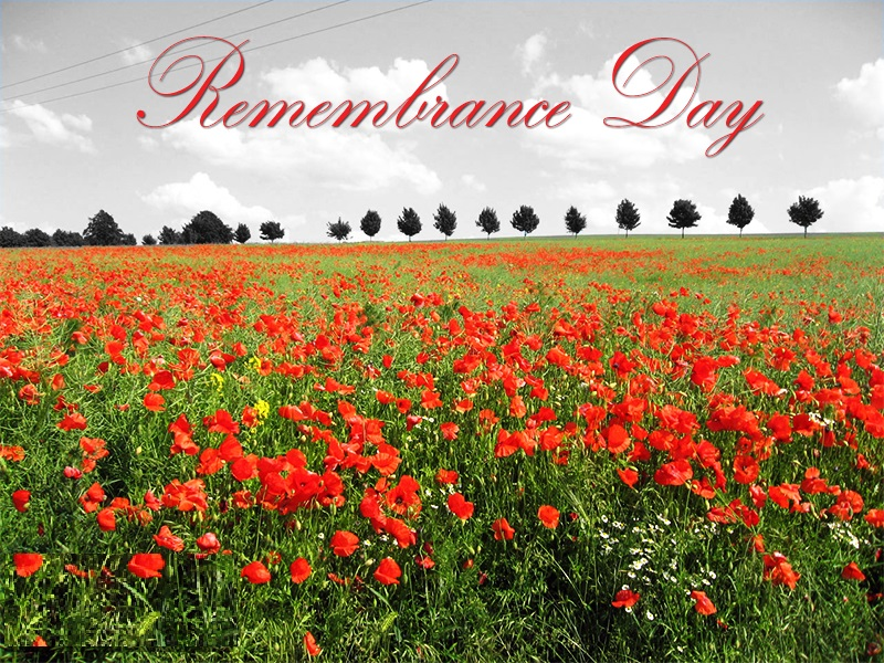 Remembrance Day Canada Quotes With Appreciation
