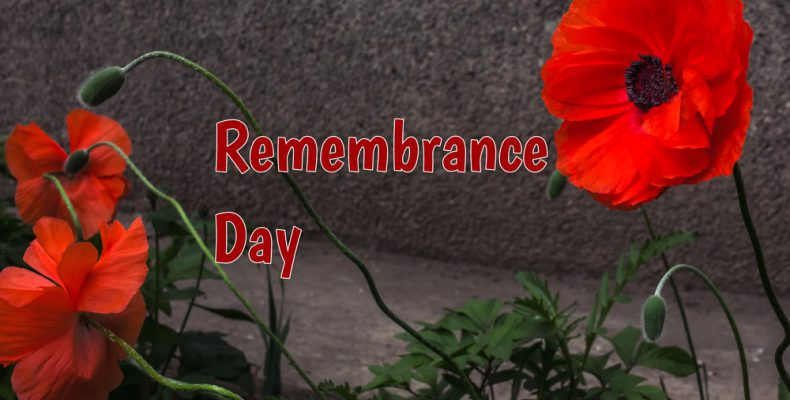 Remembrance Day Canada Vintage Pic